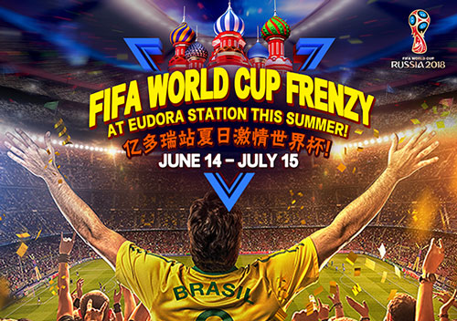 FIFA World Cup Frenzy